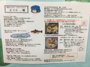 葵新聞vol44